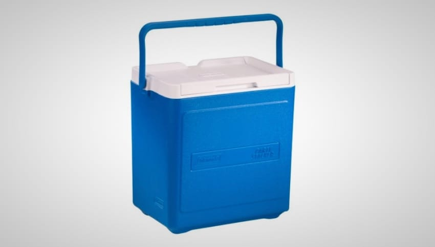 best coolers under $100