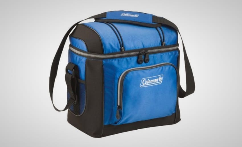 15 Best Coolers Under $100 On The Market Right Now | The Daily Want