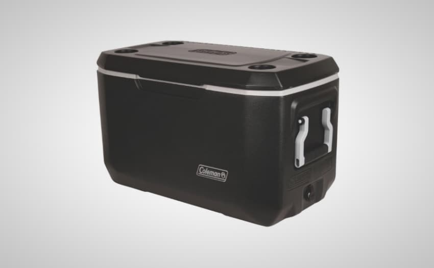 best coolers under 100