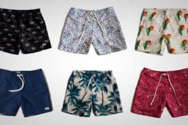 bather trunk co swimsuits